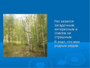 Лес казался загадочным, интересным и совсем не страшным. Я знал, что мои род