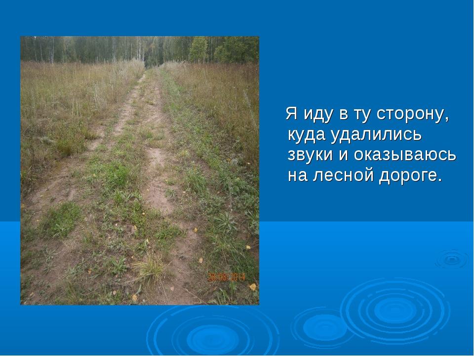 Я иду в ту сторону, куда удалились звуки и оказываюсь на лесной дороге.