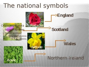 The national symbols England Scotland Wales Northern Ireland Red rose thistle