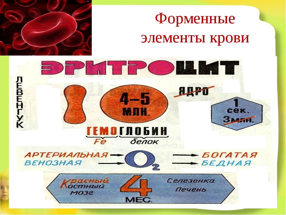 Форменные элементы крови
