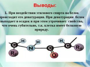 Выводы: 1. При воздействии этилового спирта на белок происходит его денатура