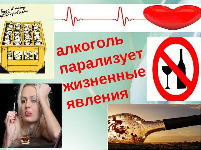 алкоголь парализует жизненные явления