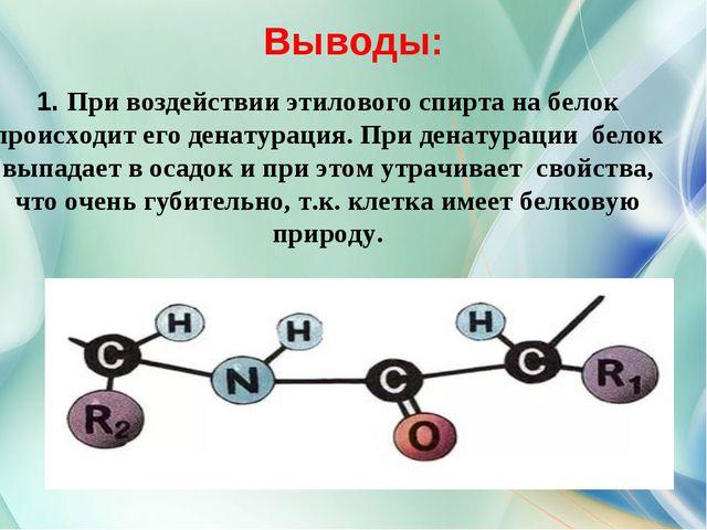 Выводы: 1. При воздействии этилового спирта на белок происходит его денатура...
