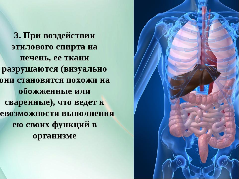 3. При воздействии этилового спирта на печень, ее ткани разрушаются (визуальн...
