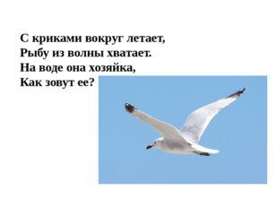 С криками вокруг летает, Рыбу из волны хватает. На воде она хозяйка, Как зову