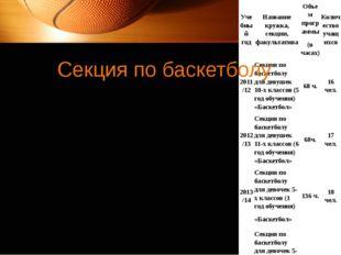 Секция по баскетболу Учебныйгод Название кружка,секции, факультатива Объем пр