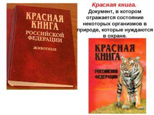 Красная книга. Документ, в котором отражается состояние некоторых организмов