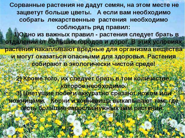Сорванные растения не дадут семян, на этом месте не зацветут больше цветы. А...