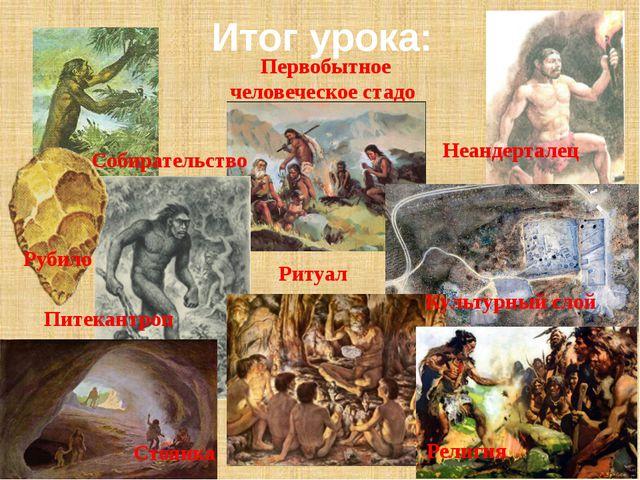 Итог урока: Неандерталец Первобытное человеческое стадо Питекантроп Ритуал Ре...