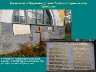 Усыпальница Бакуниных у стен Троицкой церкви в селе Прямухино Похоронен Алекс