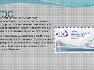АТЭС Главные рабочие органы АТЭС: Деловой консультационный совет, три комитет