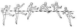 http://sportwiki.to/images/thumb/1/1c/Legkay_atletika23.jpg/250px-Legkay_atletika23.jpg