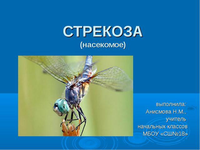 СТРЕКОЗА (насекомое) выполнила: Анисмова Н.М., учитель начальных классов МБОУ...
