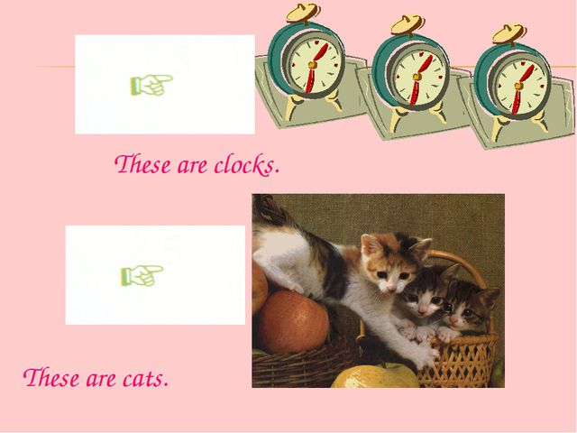These are clocks. These are cats.