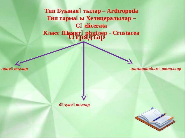 Тип Буынаяқтылар – Arthropoda Тип тармағы Хелицералылар – Сһеlicerata Класс Ш...