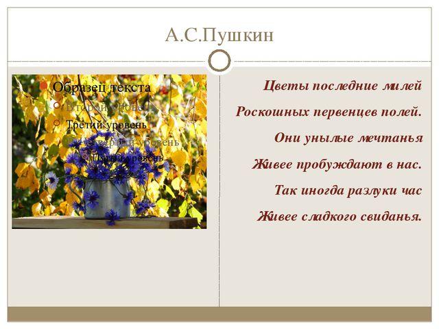 А.С.Пушкин Цветы последние милей Роскошных первенцев полей. Они унылые мечтан...