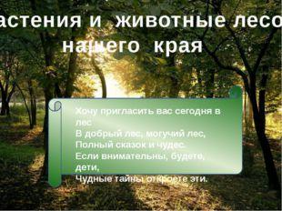 Растения и животные лесов нашего края Хочу пригласить вас сегодня в лес В доб