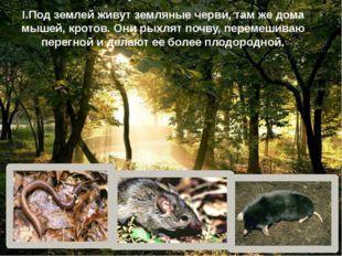 I.Под землей живут земляные черви, там же дома мышей, кротов. Они рыхлят почв