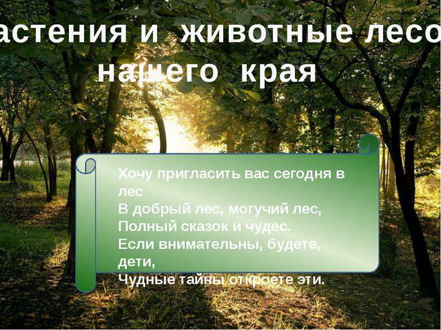 Растения и животные лесов нашего края Хочу пригласить вас сегодня в лес В доб...