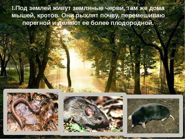 I.Под землей живут земляные черви, там же дома мышей, кротов. Они рыхлят почв...