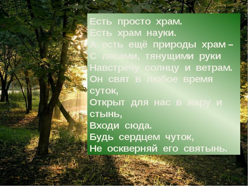 Есть просто храм. Есть храм науки. А есть ещё природы храм – С лесам...