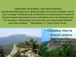 Известняковые породы, составляющие бо́льшую часть горных пород на территории