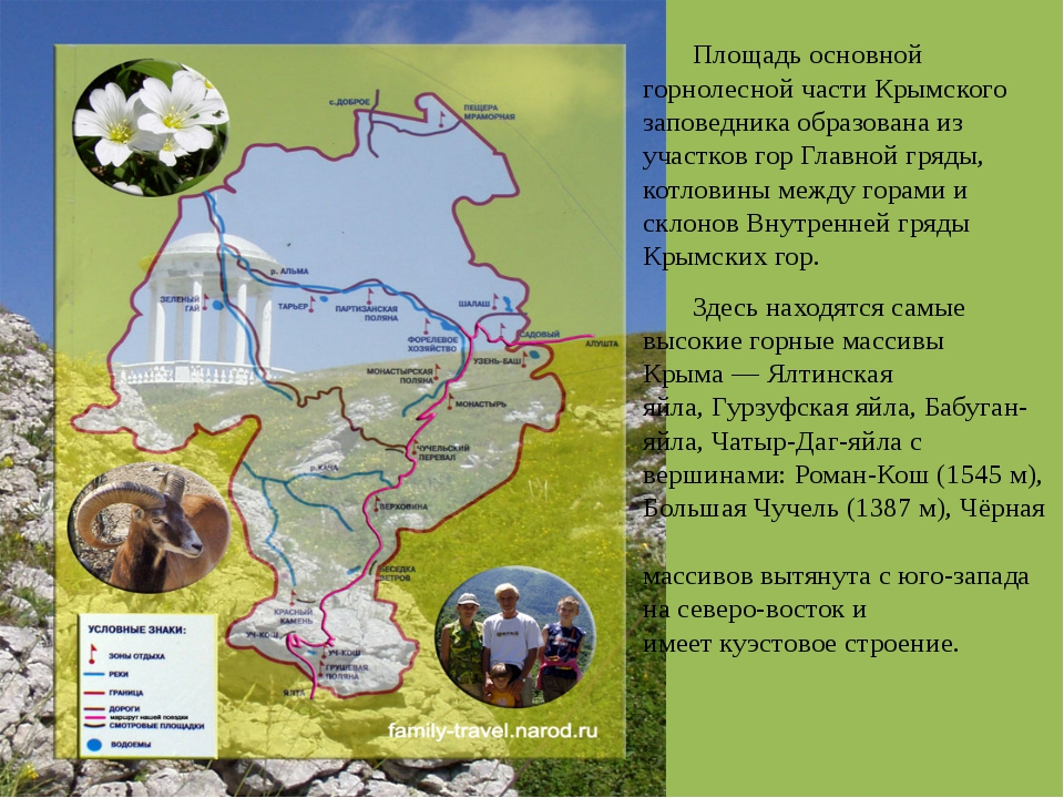 Площадь основной горнолесной части Крымского заповедника образована из участ...