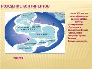 Около 600 млн.лет назад образовался древний материк ПАНГЕЯ к этому времени об