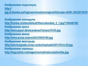 Изображение подсолнуха http://jpg.st.klumba.ua/img/users/avatars/original/42/