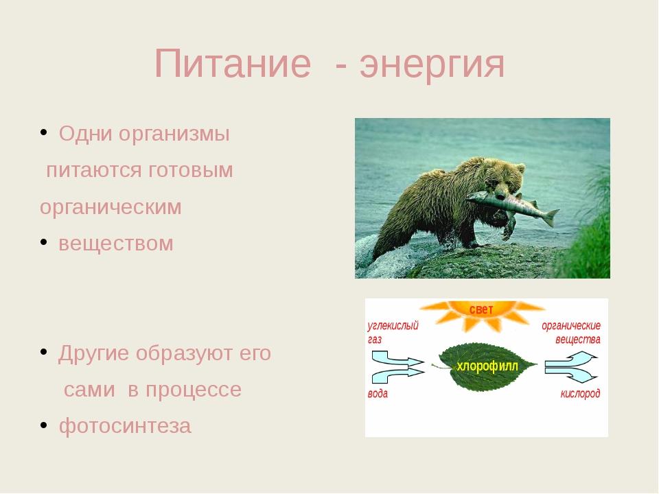 Питание - энергия Одни организмы питаются готовым органическим веществом Друг...