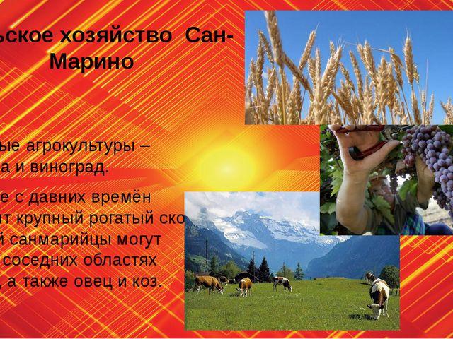 Сельское хозяйство Сан-Марино Основные агрокультуры – пшеница и виноград. В с...