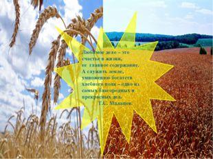 Любимое дело – это счастье в жизни, ее главное содержание. А служить земле,