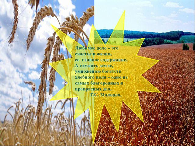 Любимое дело – это счастье в жизни, ее главное содержание. А служить земле,...