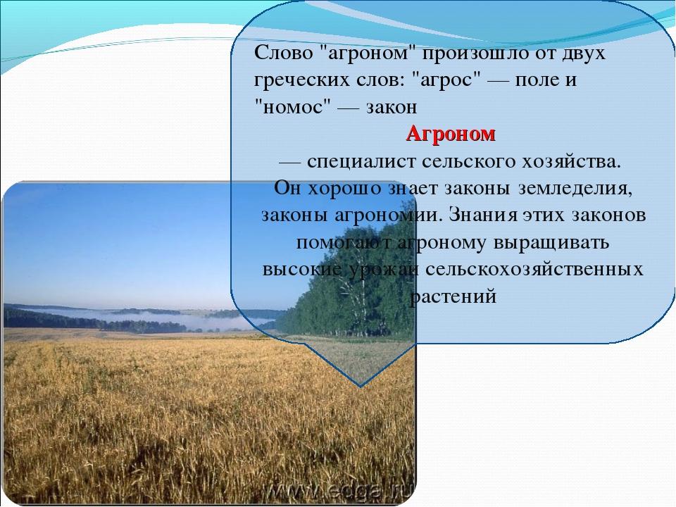 """Слово """"агроном"""" произошло от двух греческих слов: """"агрос"""" — поле и """"номос"""" —..."""