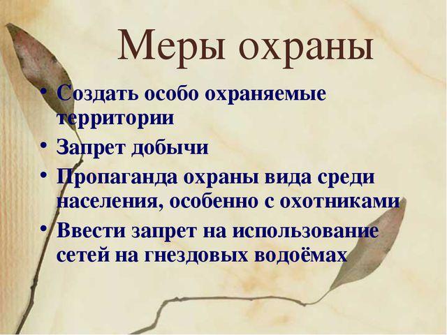 Меры охраны Создать особо охраняемые территории Запрет добычи Пропаганда охра...