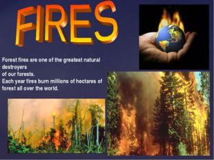 Forest fires are one of the greatest natural destroyers of our forests. Each