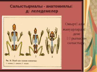 Салыстырмалы - анатомиялық дәлеледемелер Омыртқалы жануарлардың дене құрылысы