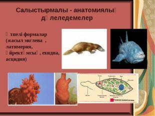 Салыстырмалы - анатомиялық дәлеледемелер Өтпелі формалар (жасыл эвглена , лат