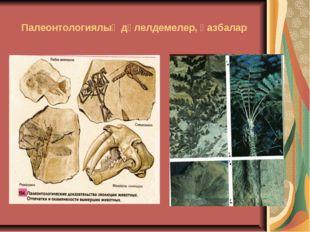 Палеонтологиялық дәлелдемелер, қазбалар