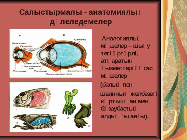 Салыстырмалы - анатомиялық дәлеледемелер Аналогиялық мүшелер – шығу тегі әртү...