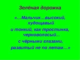Зелёная дорожка «…Мальчик…высокий, худощавый и тонкий, как тростинка, черново