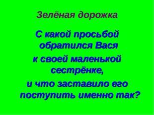 Зелёная дорожка С какой просьбой обратился Вася к своей маленькой сестрёнке,