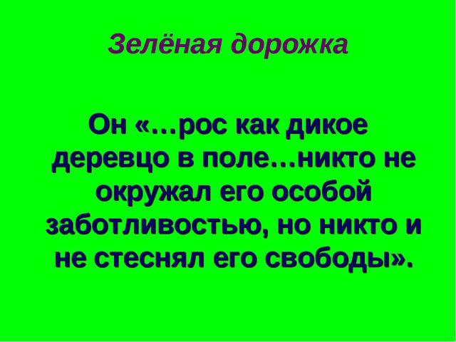 Зелёная дорожка Он «…рос как дикое деревцо в поле…никто не окружал его особой...