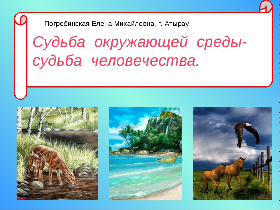 Судьба окружающей среды-судьба человечества. Погребинская Елена Михайловна, г...
