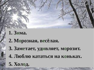1. Зима. 2. Морозная, весёлая. 3. Заметает, удивляет, морозит. 4. Люблю ката