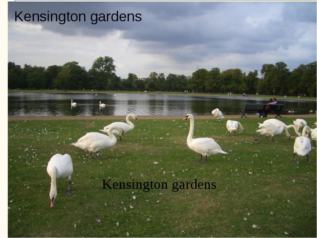 Kensington gardens Kensington gardens