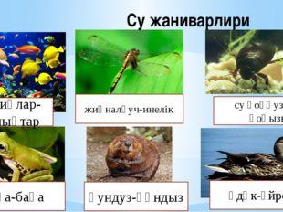 Су жаниварлири жиңналғуч-инелік су қоңғузи-су қоңызы пақа-бақа қундуз-құндыз