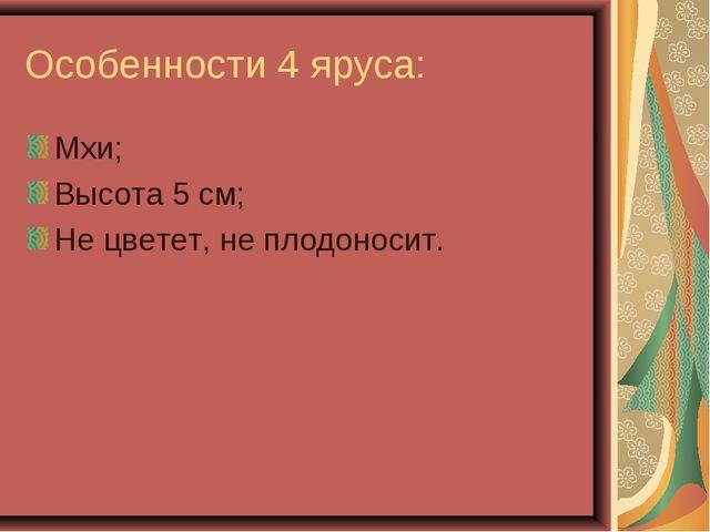 Особенности 4 яруса: Мхи; Высота 5 см; Не цветет, не плодоносит.