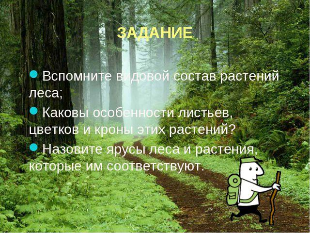ЗАДАНИЕ Вспомните видовой состав растений леса; Каковы особенности листьев,...