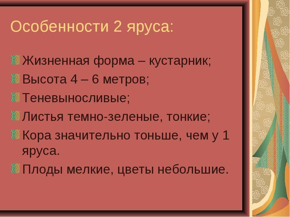 Особенности 2 яруса: Жизненная форма – кустарник; Высота 4 – 6 метров; Теневы...